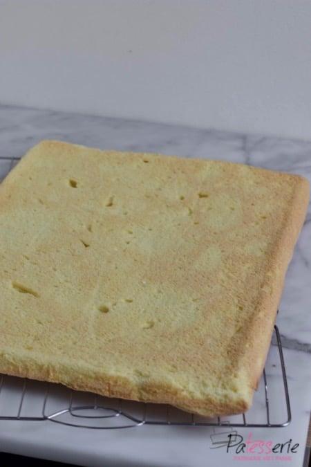 Biscuit van de bakplaat gebakken zorgt voor mooie dunne lagen luchtige cake die sneller gebakken zijn en voor meer taart doeleinden geschikt zijn
