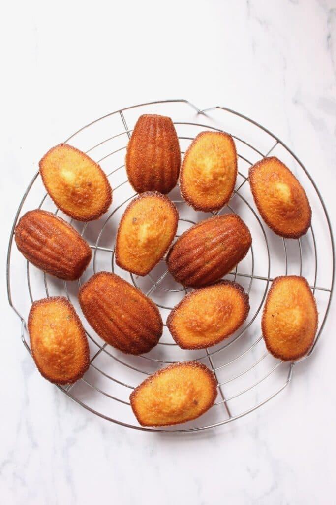 madeleines met een chocolade laagje op een taartrooster